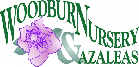 Woodburn Nursery and Azaleas